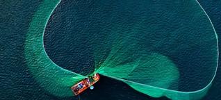 Worauf wir beim Fischessen achten sollten