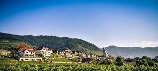 Wege zum Wein: Traumhafte Touren in Österreich