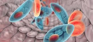 Unerforschtes Schmarotzertum - Parasiten - mehr als Schädlinge