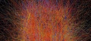 Playing with neuronal fire